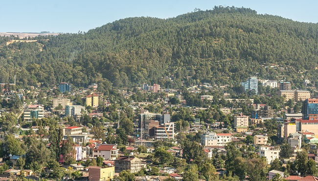 Orange, MTN, STC among 12 vying for Ethiopia licences - Mobile World Live