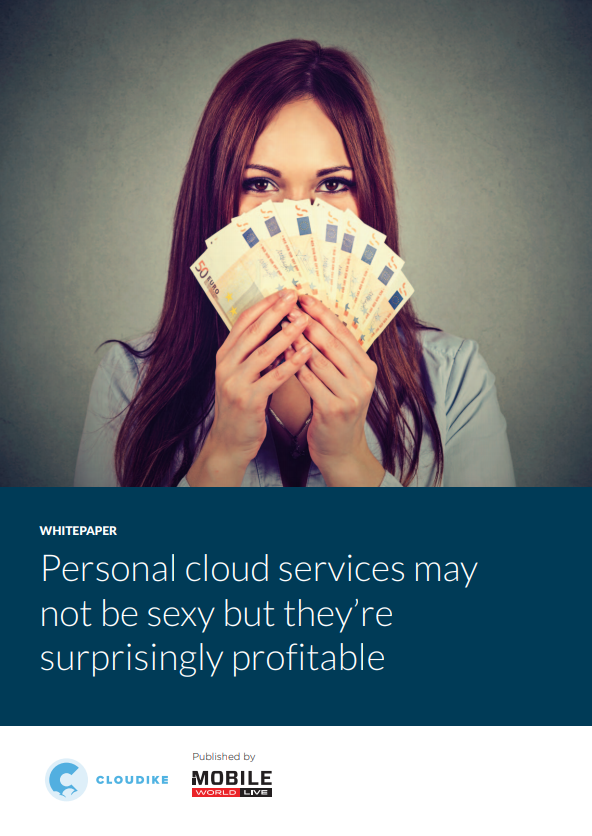 Personal cloud services may not be sexy but they're surprisingly profitable
