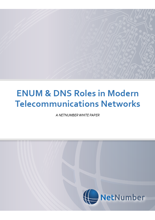 Modern and flexible ENUM/DNS functions in networks are critical for future success